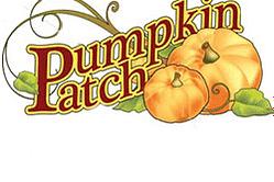 pumpkin-patch-200-height